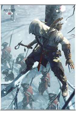 Assassins Creed III Wallscroll Vol.